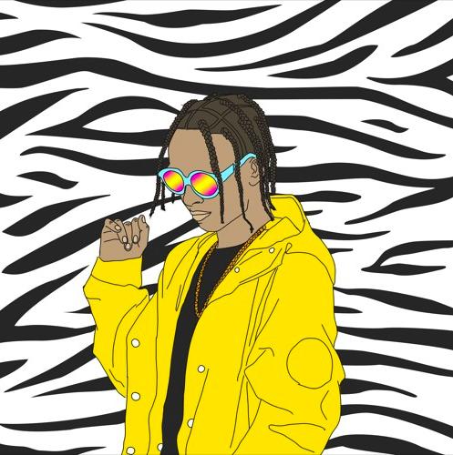 """Plad Fine$$e – """"Zebra Print"""" [Prod. 4oToRoles]"""