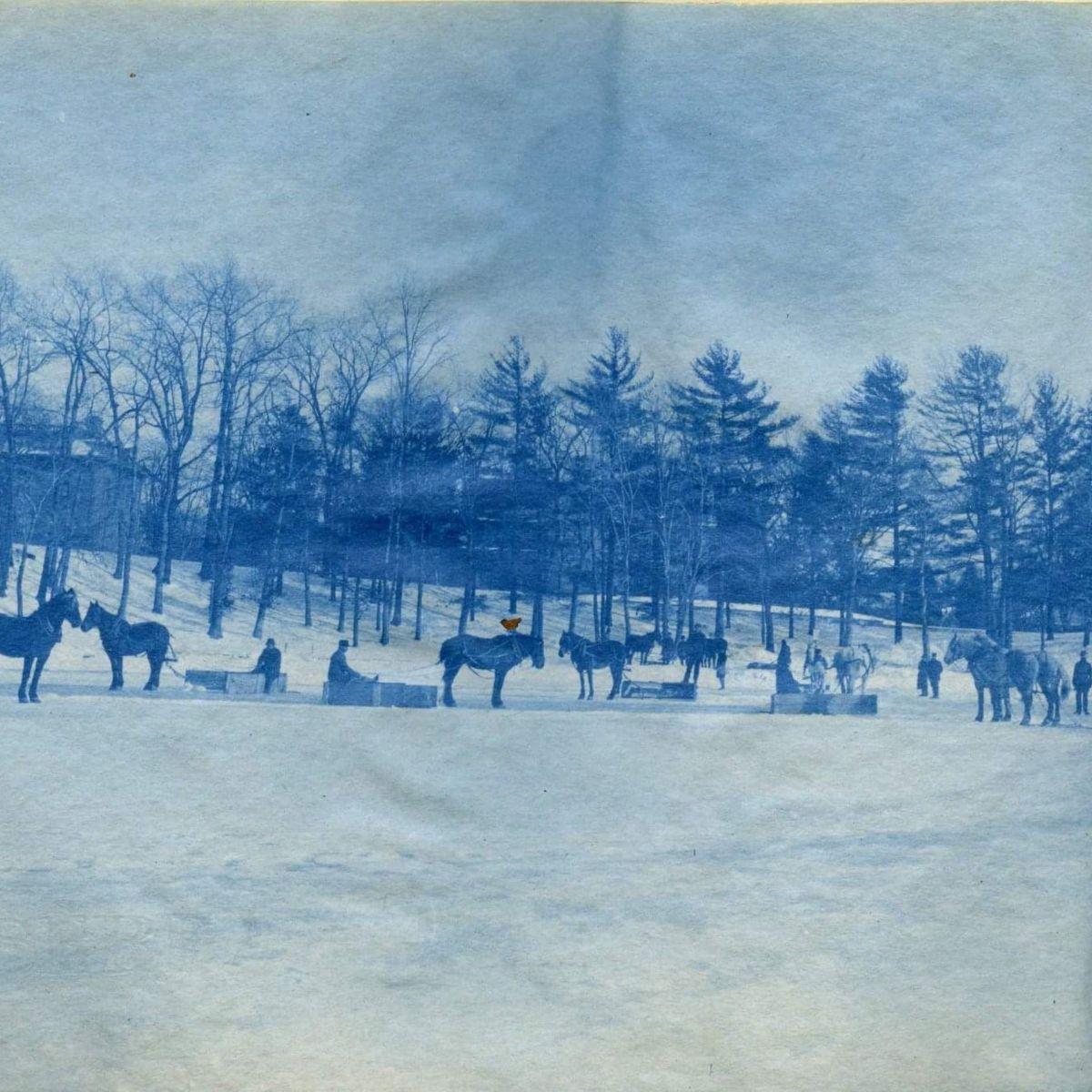 "Rothstein – ""endless winter freestyle"" (Prod. fallenatom)"